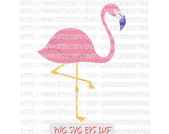 Chilean Flamingo svg #14, Download drawings