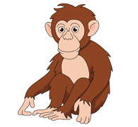 Chimpanzee clipart #20, Download drawings