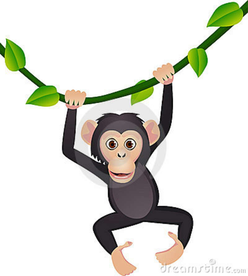 Chimpanzee clipart #3, Download drawings