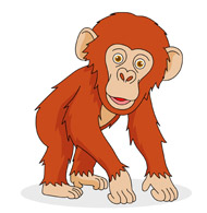 Chimpanzee clipart #19, Download drawings