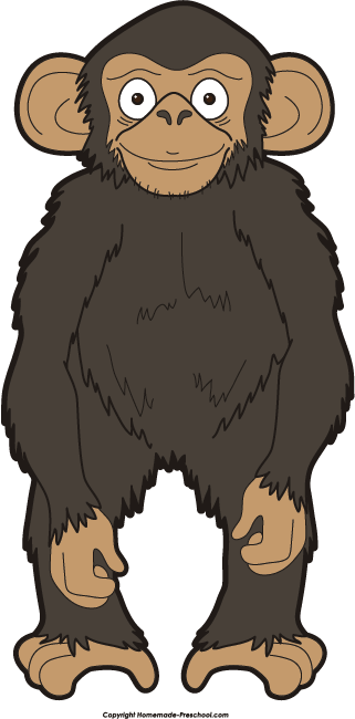 Chimpanzee clipart #14, Download drawings