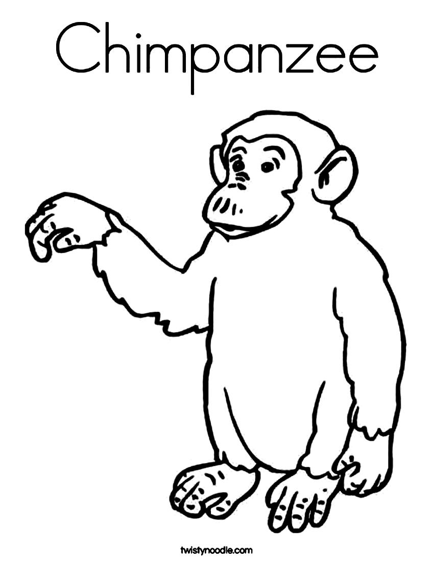 Chimpanzee coloring #20, Download drawings