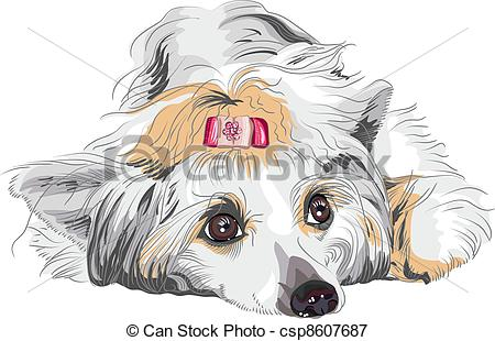 Chinese Crested Dog clipart #8, Download drawings