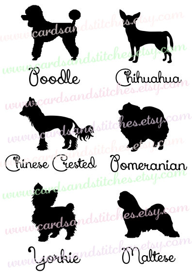Chinese Crested Dog svg #4, Download drawings