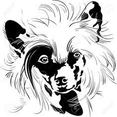 Chinese Crested Dog svg #14, Download drawings