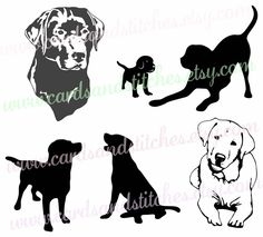 Chinese Crested Dog svg #5, Download drawings