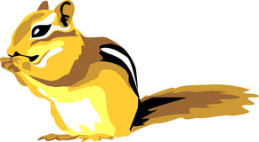 Chipmunk clipart #7, Download drawings