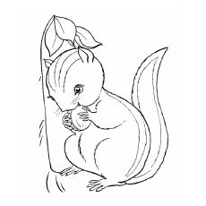 Chipmunk coloring #3, Download drawings