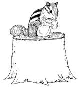 Chipmunk coloring #12, Download drawings