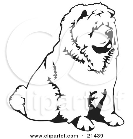 Chow Chow clipart #17, Download drawings