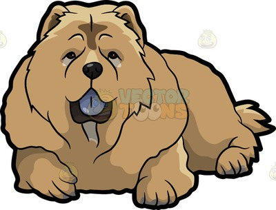 Chow Chow clipart #11, Download drawings