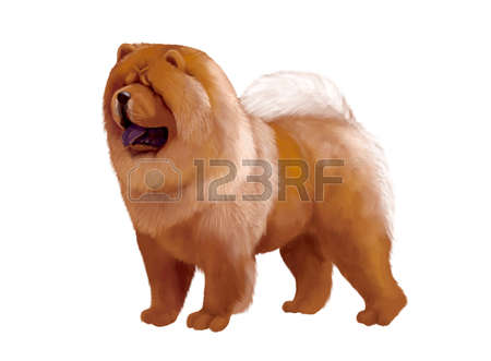 Chow Chow clipart #7, Download drawings