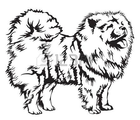 Chow Chow clipart #16, Download drawings