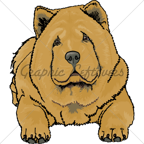 Chow Chow clipart #3, Download drawings