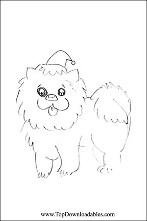 Chow Chow coloring #1, Download drawings