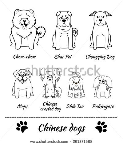 Chow Chow svg #6, Download drawings