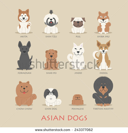 Chow Chow svg #2, Download drawings
