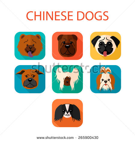 Chow Chow svg #13, Download drawings