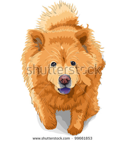 Chow Chow svg #12, Download drawings