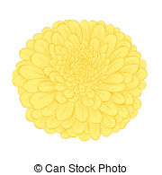 Chrysanthemum clipart #7, Download drawings