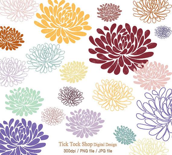 Chrysanthemum clipart #5, Download drawings