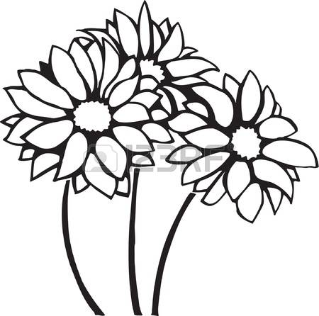 Chrysanthemum clipart #10, Download drawings