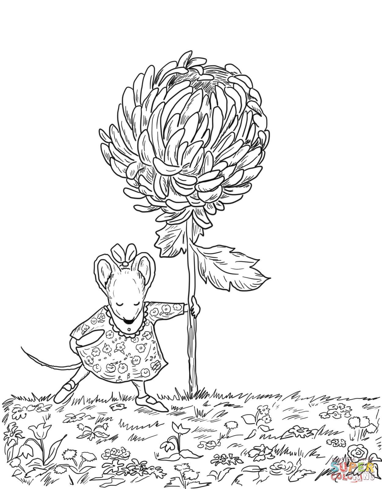 Chrysanthemum coloring #8, Download drawings