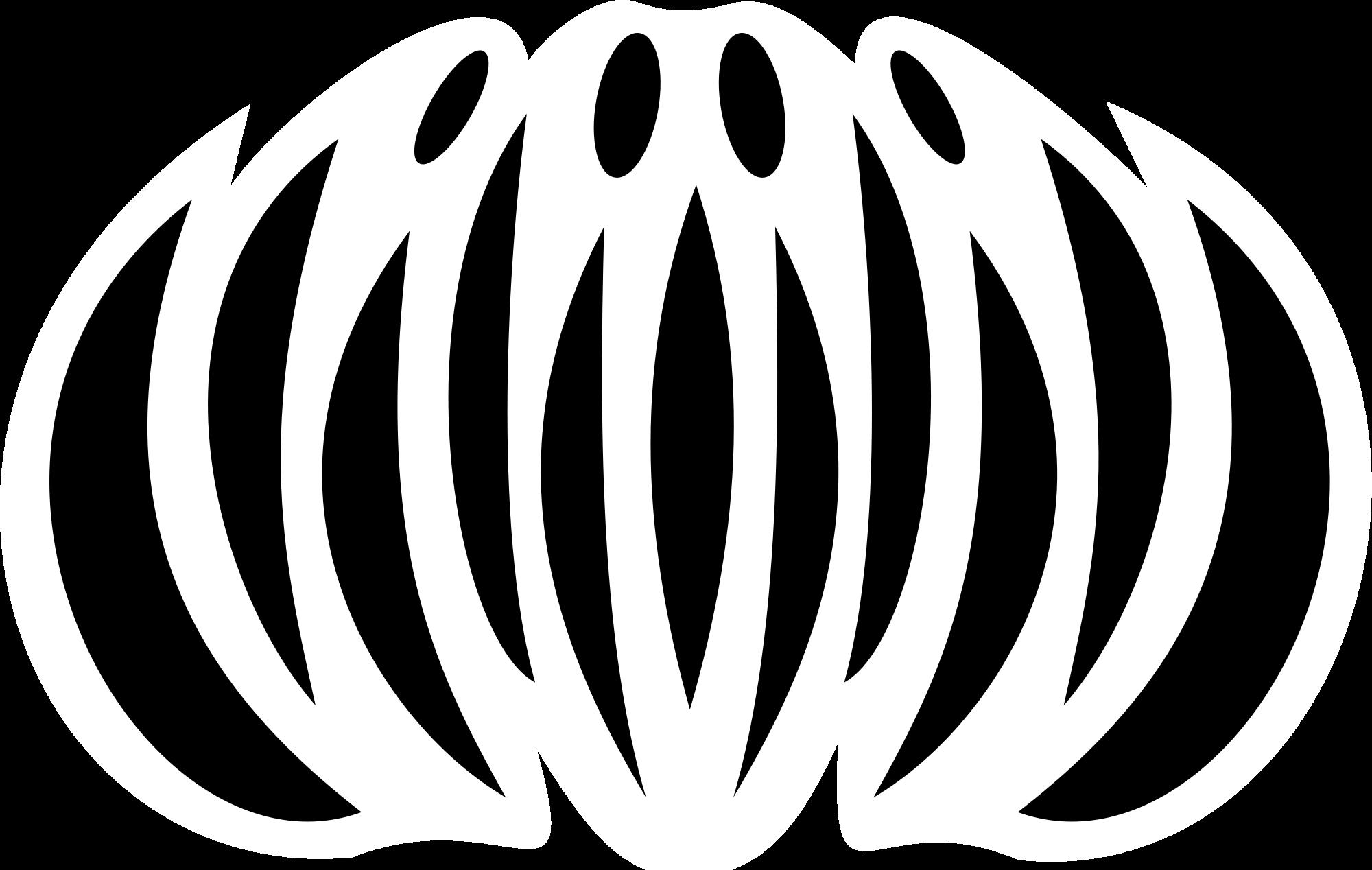Chrysanthemum svg #4, Download drawings