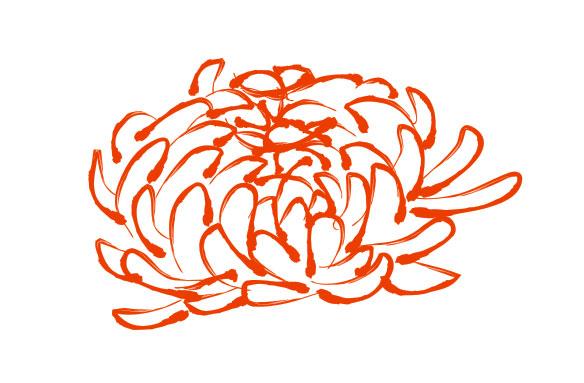 Chrysanthemum svg #17, Download drawings