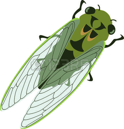 Cicada clipart #13, Download drawings