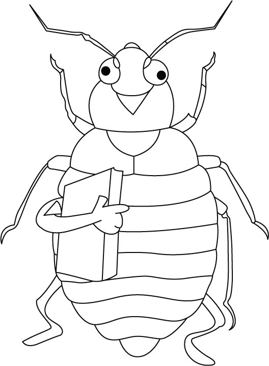 Cicada coloring #13, Download drawings