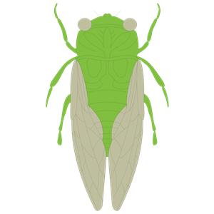 Cicada svg #15, Download drawings