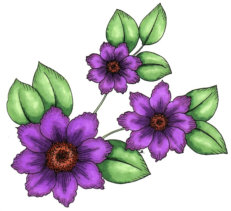 Clematis clipart #20, Download drawings