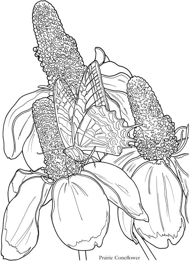 Click N Bloom coloring #6, Download drawings