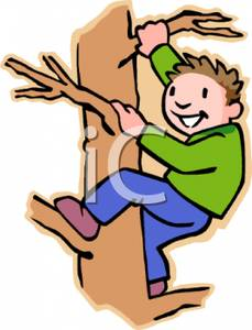 Climbing Tree clipart #20, Download drawings