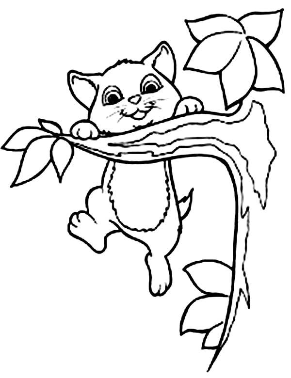 Climbing Tree coloring #12, Download drawings