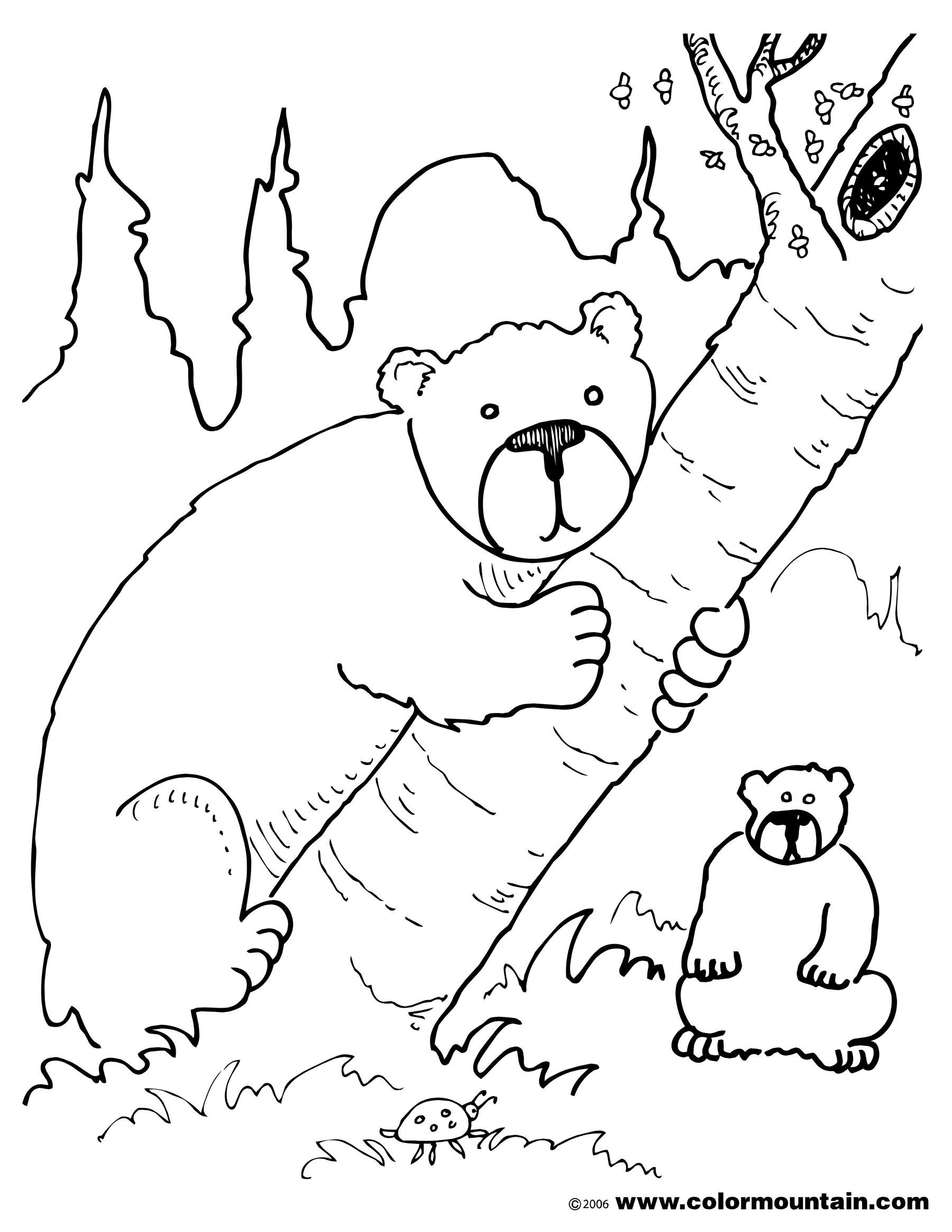 Climbing Tree coloring #3, Download drawings