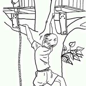 Climbing Tree coloring #7, Download drawings