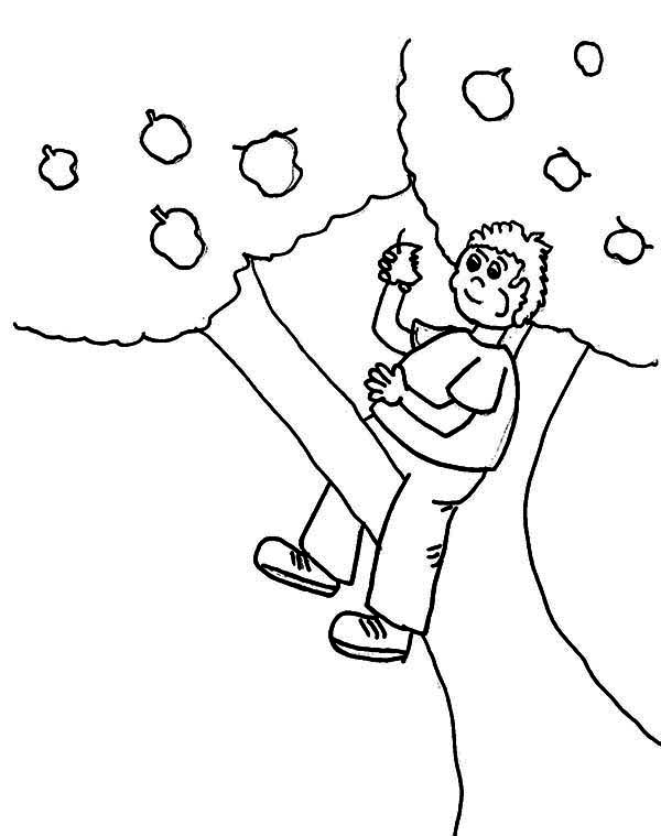 Climbing Tree coloring #8, Download drawings