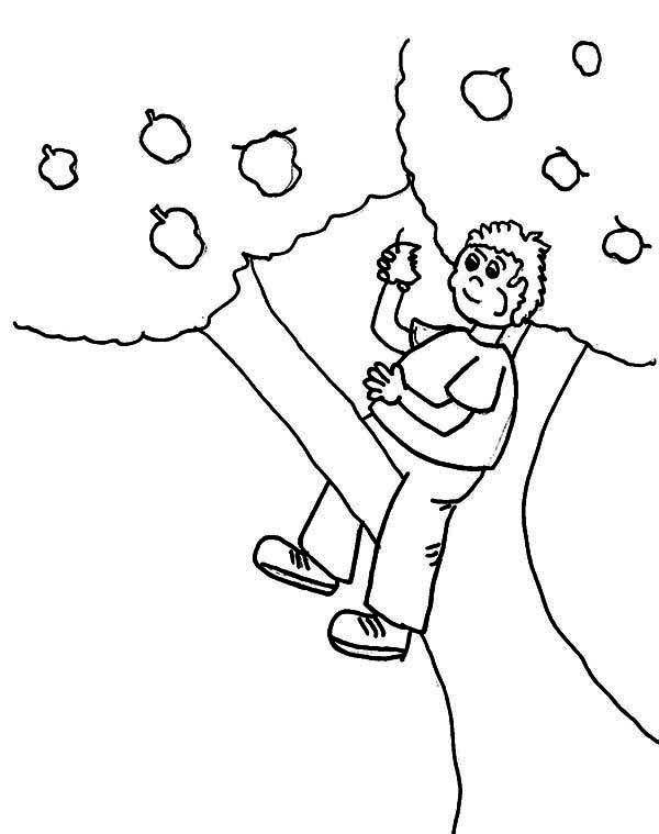 Climbing Tree coloring #8, Download drawings