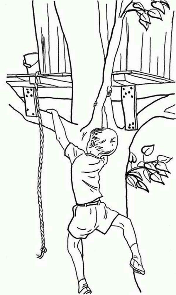 Climbing Tree coloring #4, Download drawings