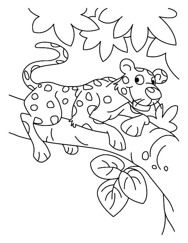 Climbing Tree coloring #6, Download drawings