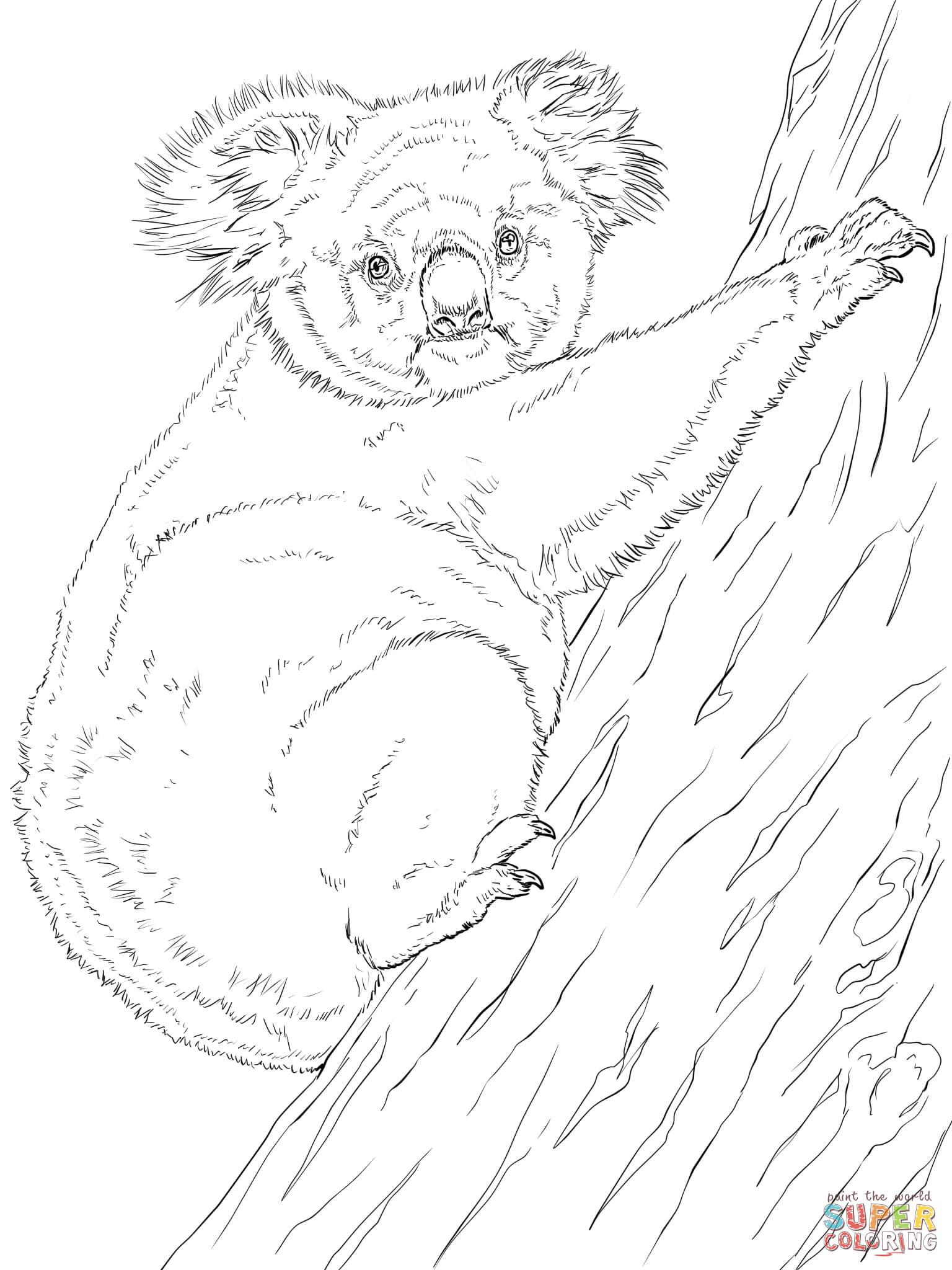 Climbing Tree coloring #2, Download drawings