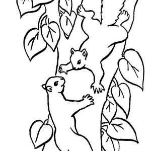 Climbing Tree coloring #5, Download drawings