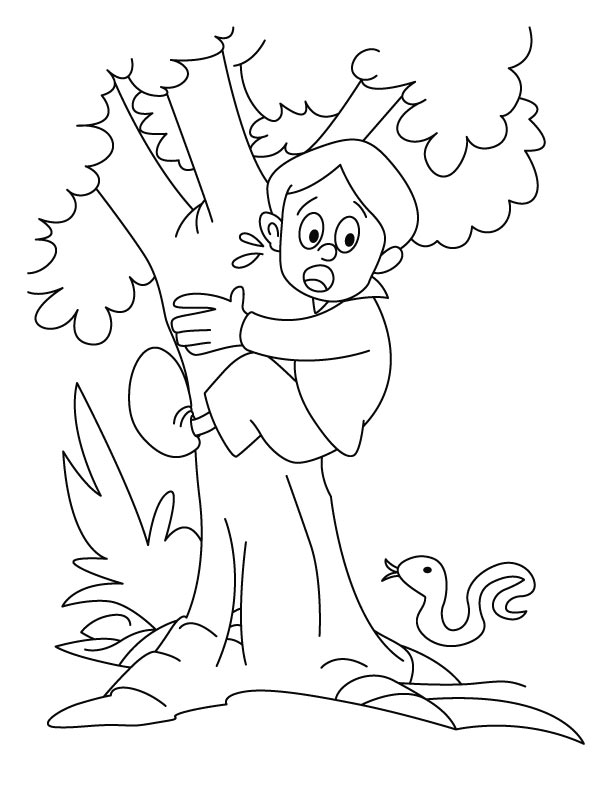 Climbing Tree coloring #13, Download drawings
