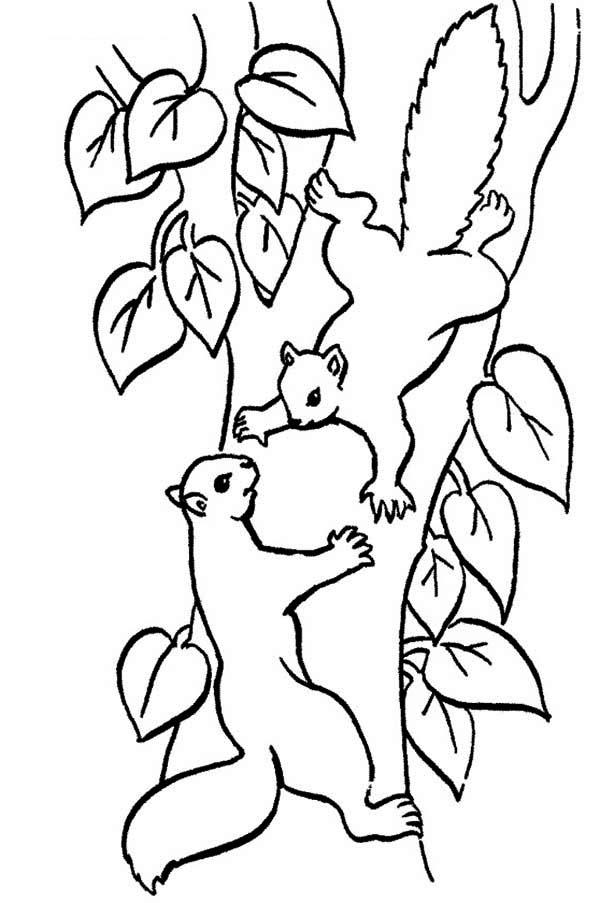 Climbing Tree coloring #14, Download drawings