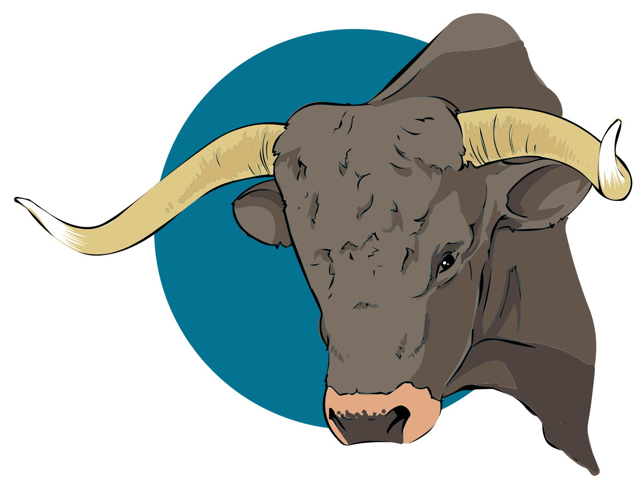 Bulls svg #13, Download drawings