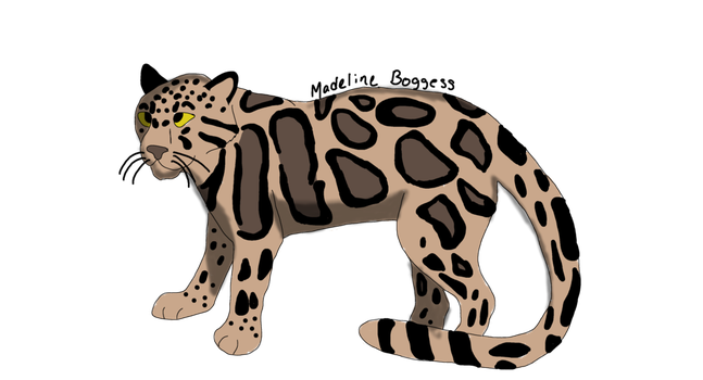 Clouded Leopard  clipart #1, Download drawings