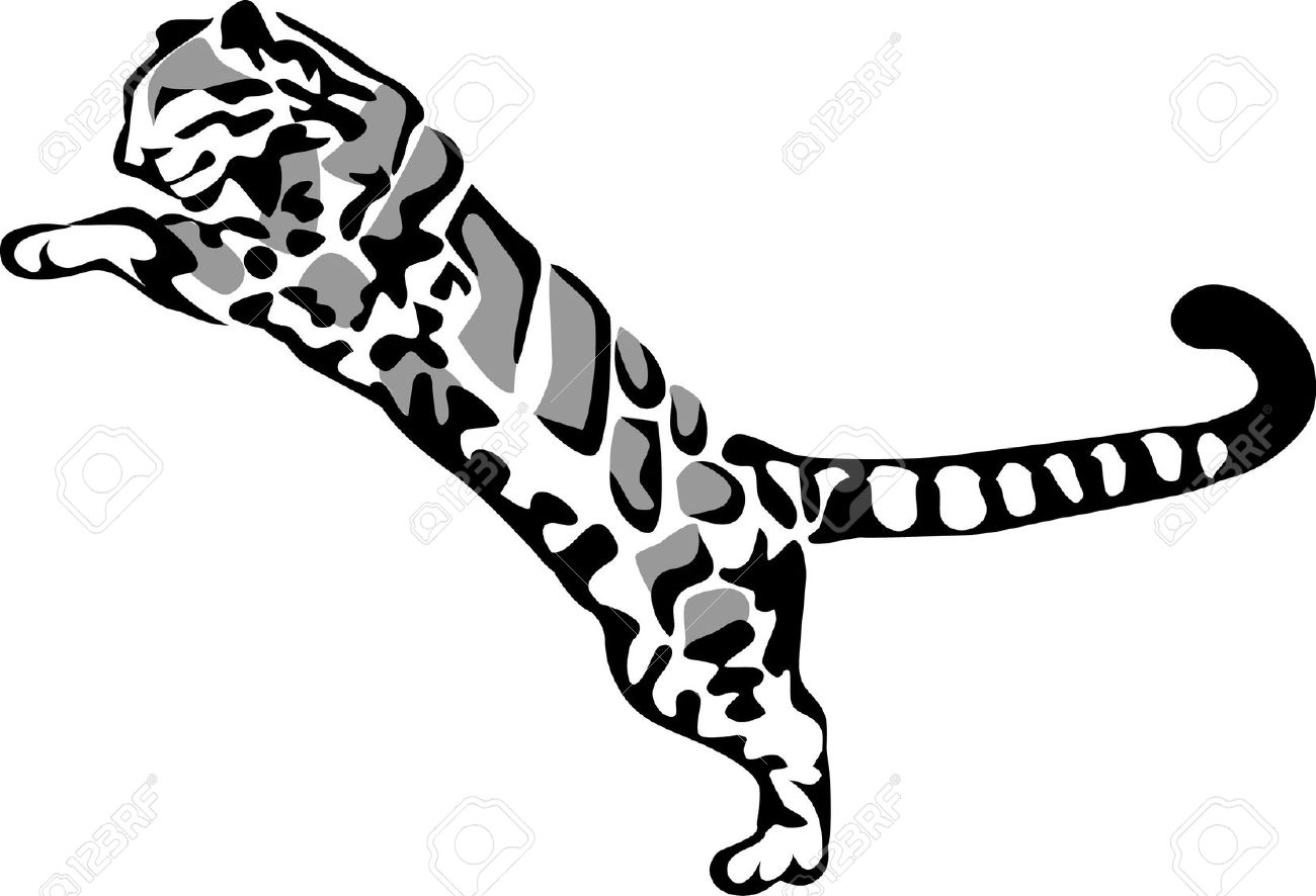 Clouded Leopard  clipart #16, Download drawings