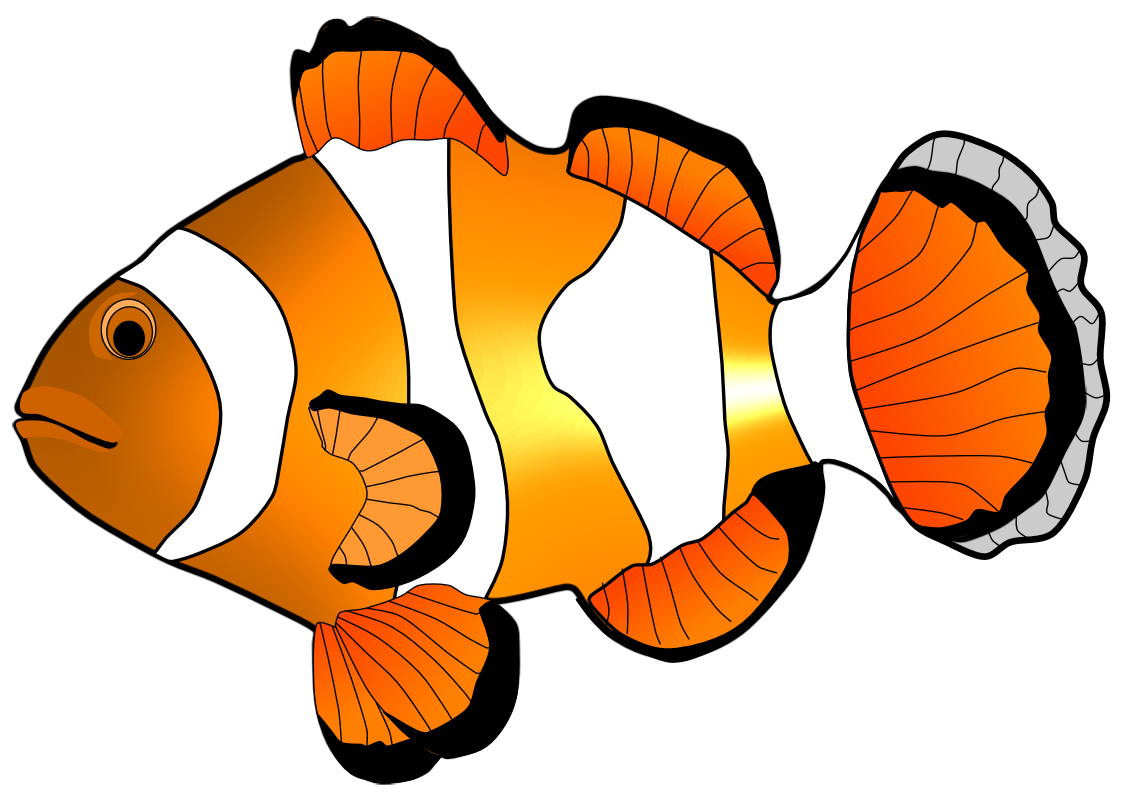 Clownfish clipart #2, Download drawings